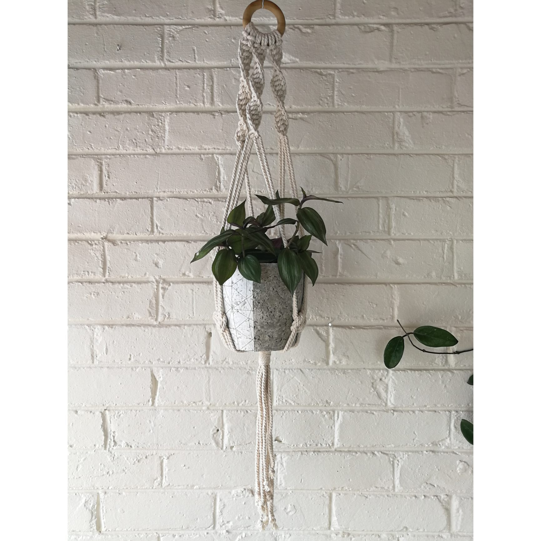 Macramé hanger with white geometric plant pot