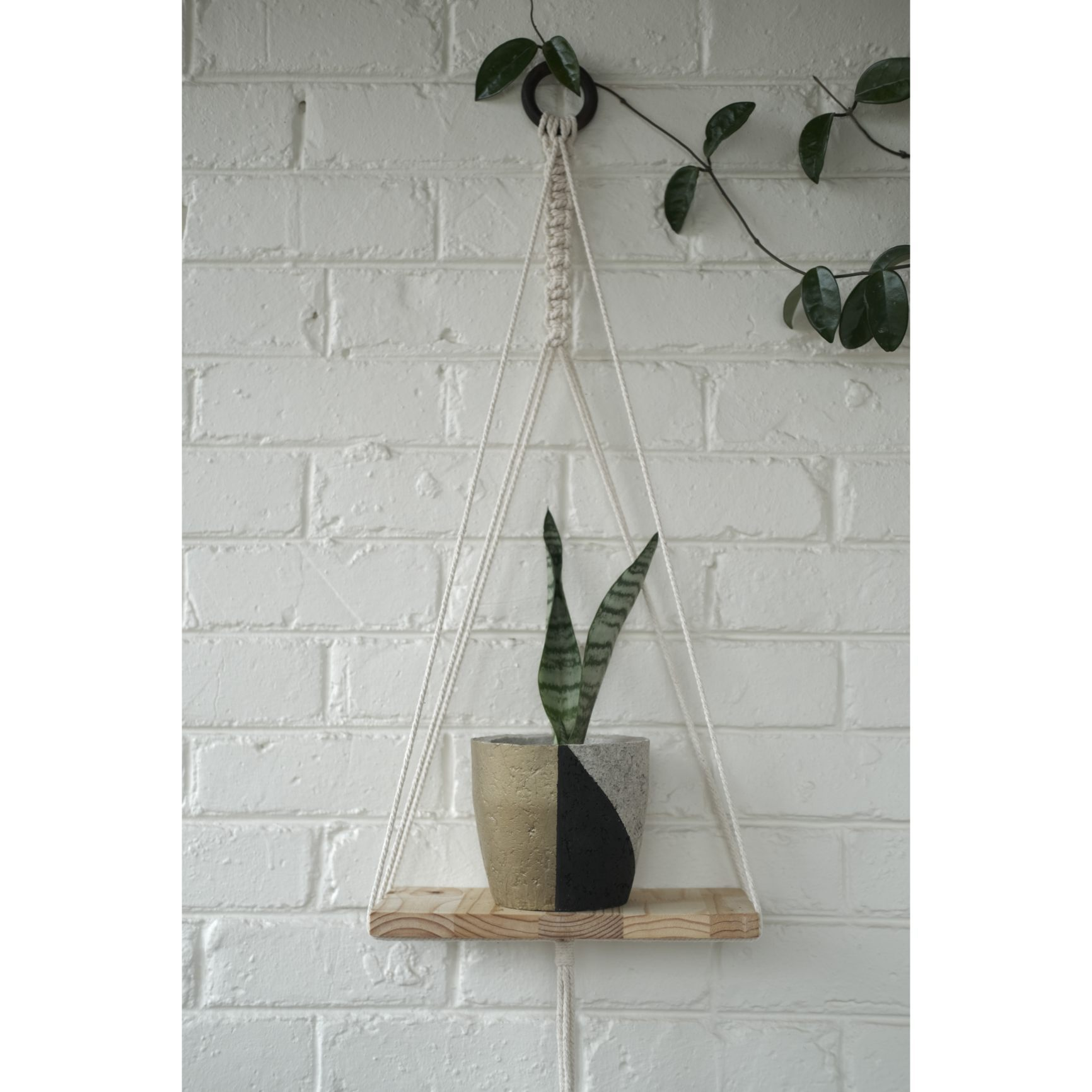 Modern macramé shelf with black/gold plant pot