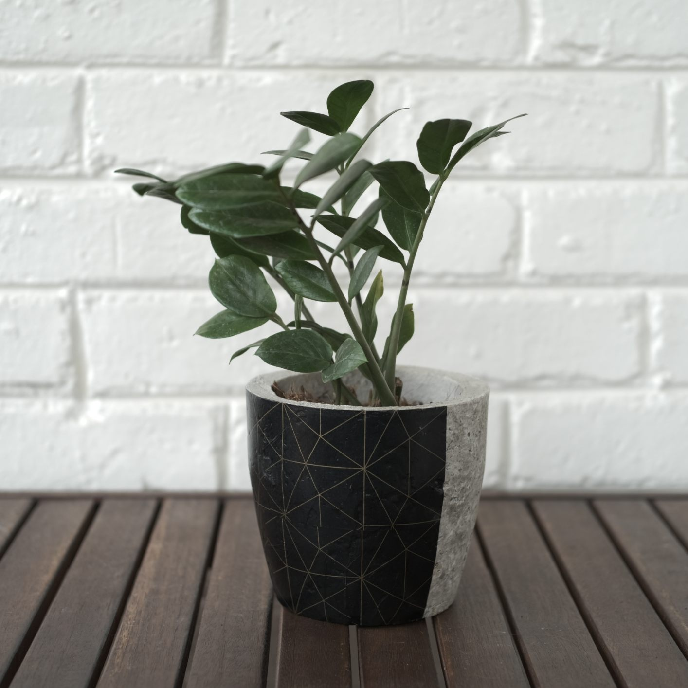 Plant pot - planter with black and gold geometric print