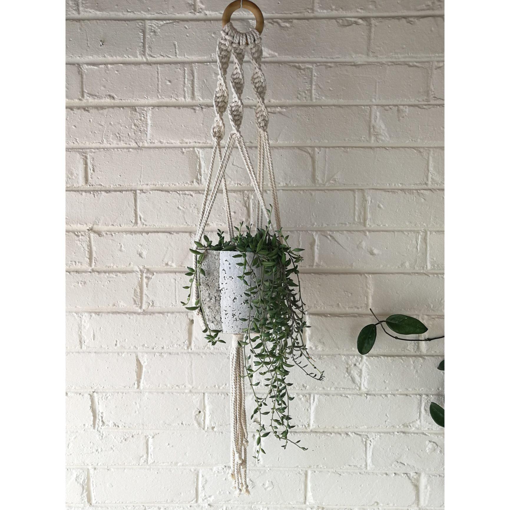 Macramé hanger with white plant pot