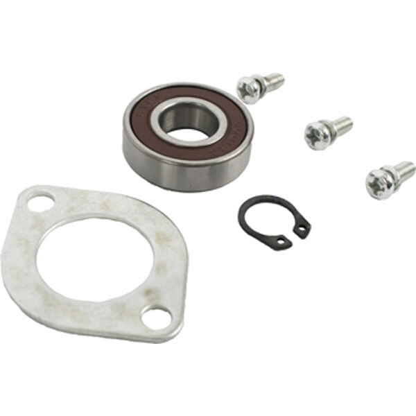 POLISHER S/KIT ARMATURE FRONT BEARING & SCREWS (21-25) FOR POL02