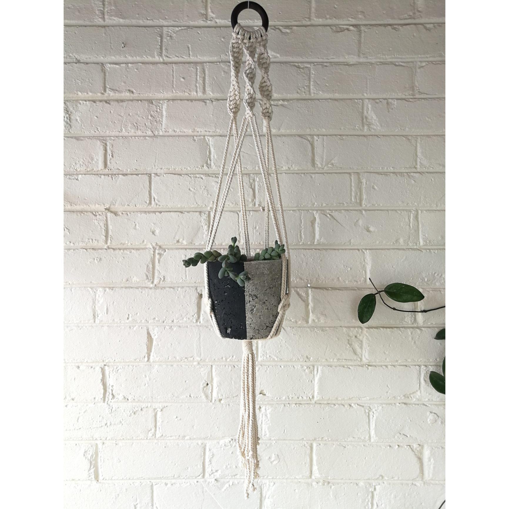 Macramé hanger with black plant pot