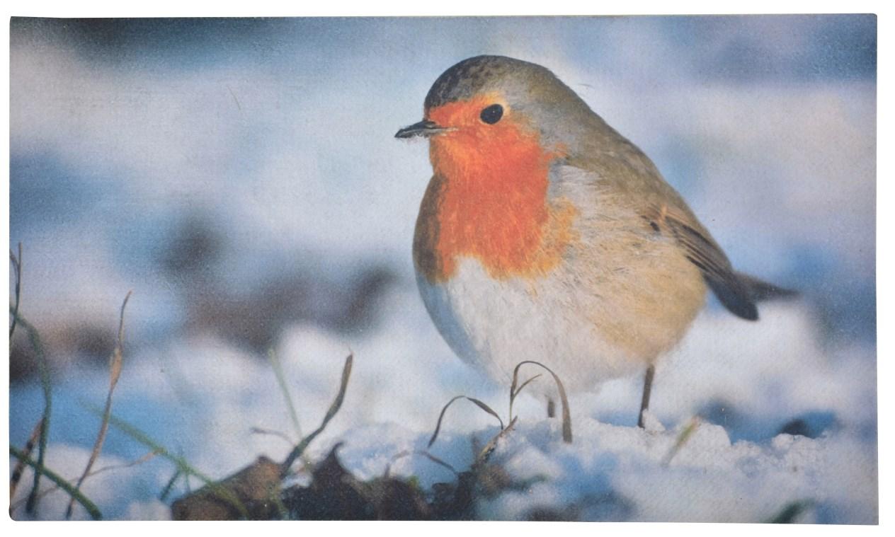 Doormat 'Robin'