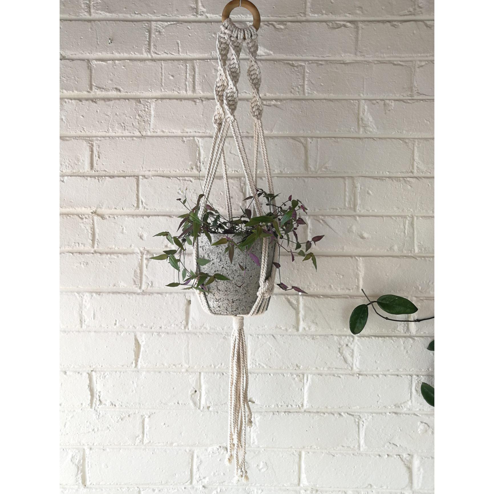 Macramé hanger with plain plant pot