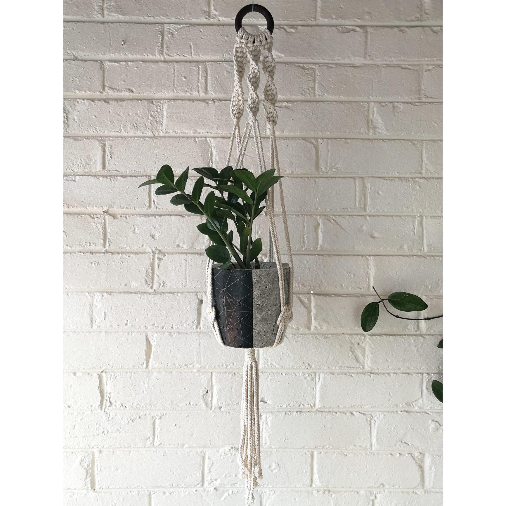 Macramé hanger with black geometric plant pot