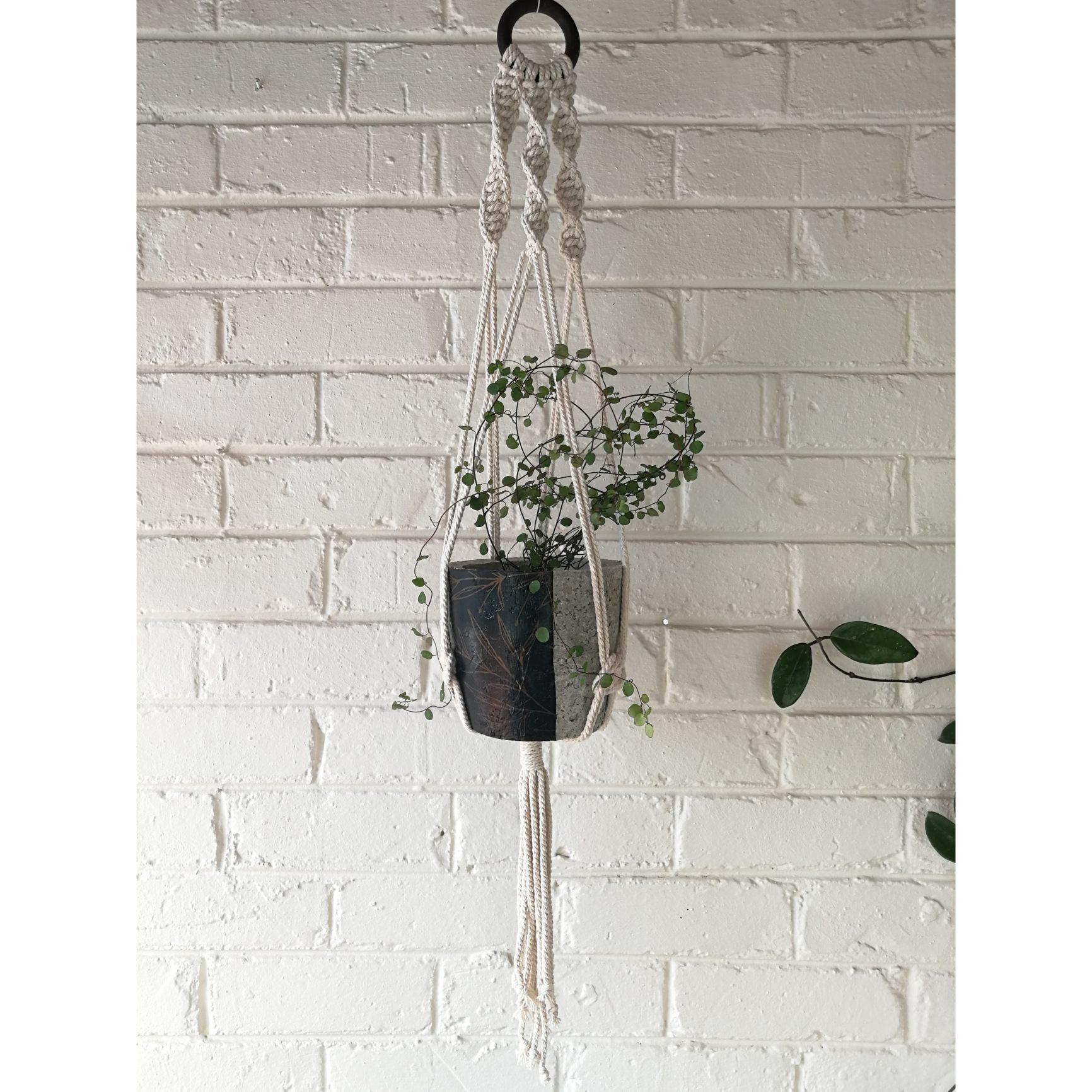 Macramé hanger with floral plant pot