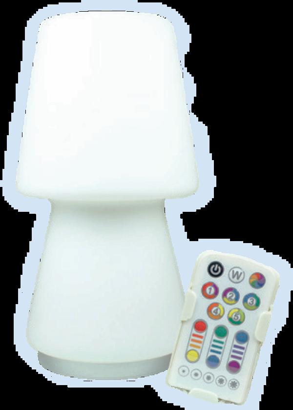 Colour Changing LED Desk Lamp - TAM