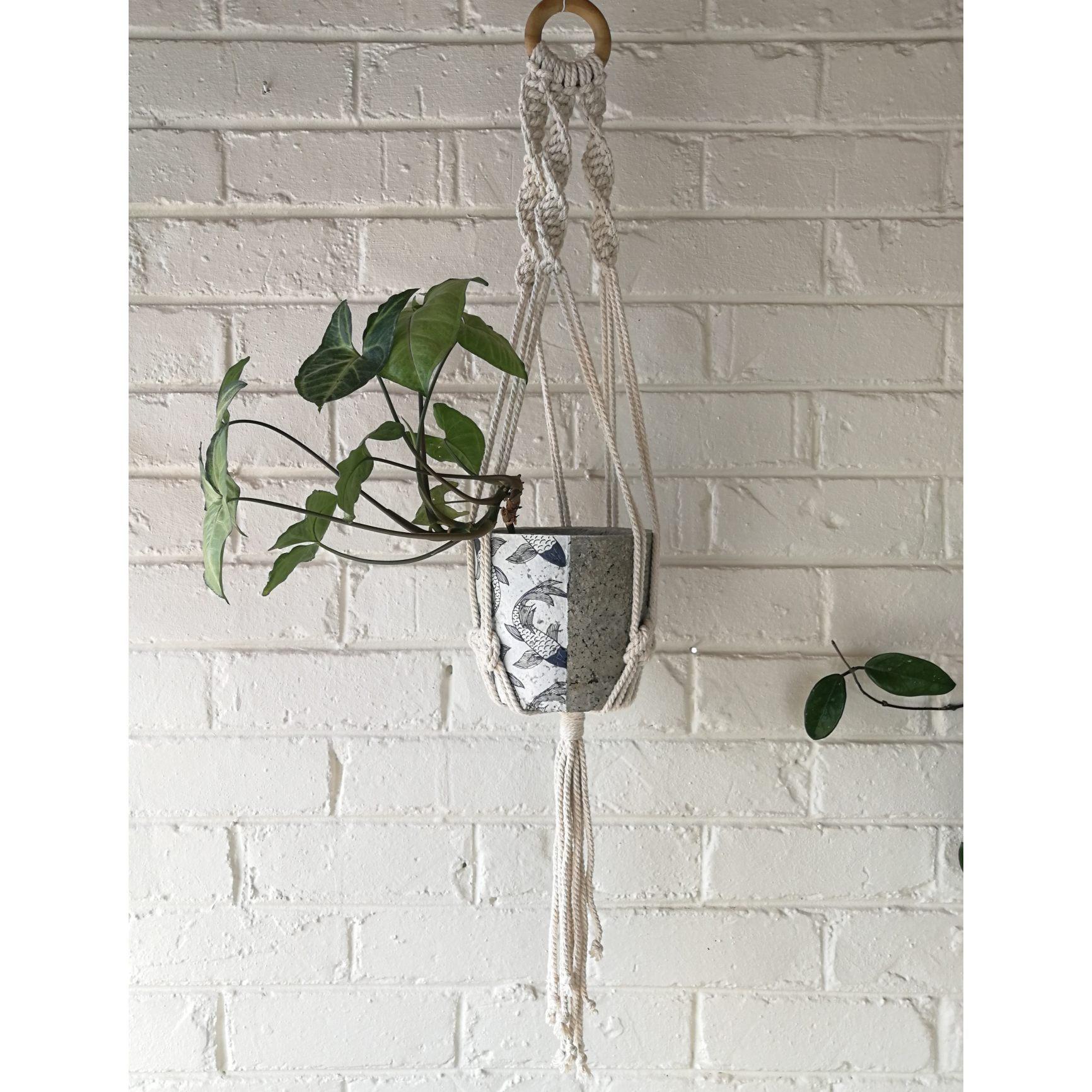 Macramé hanger with koi fish plant pot