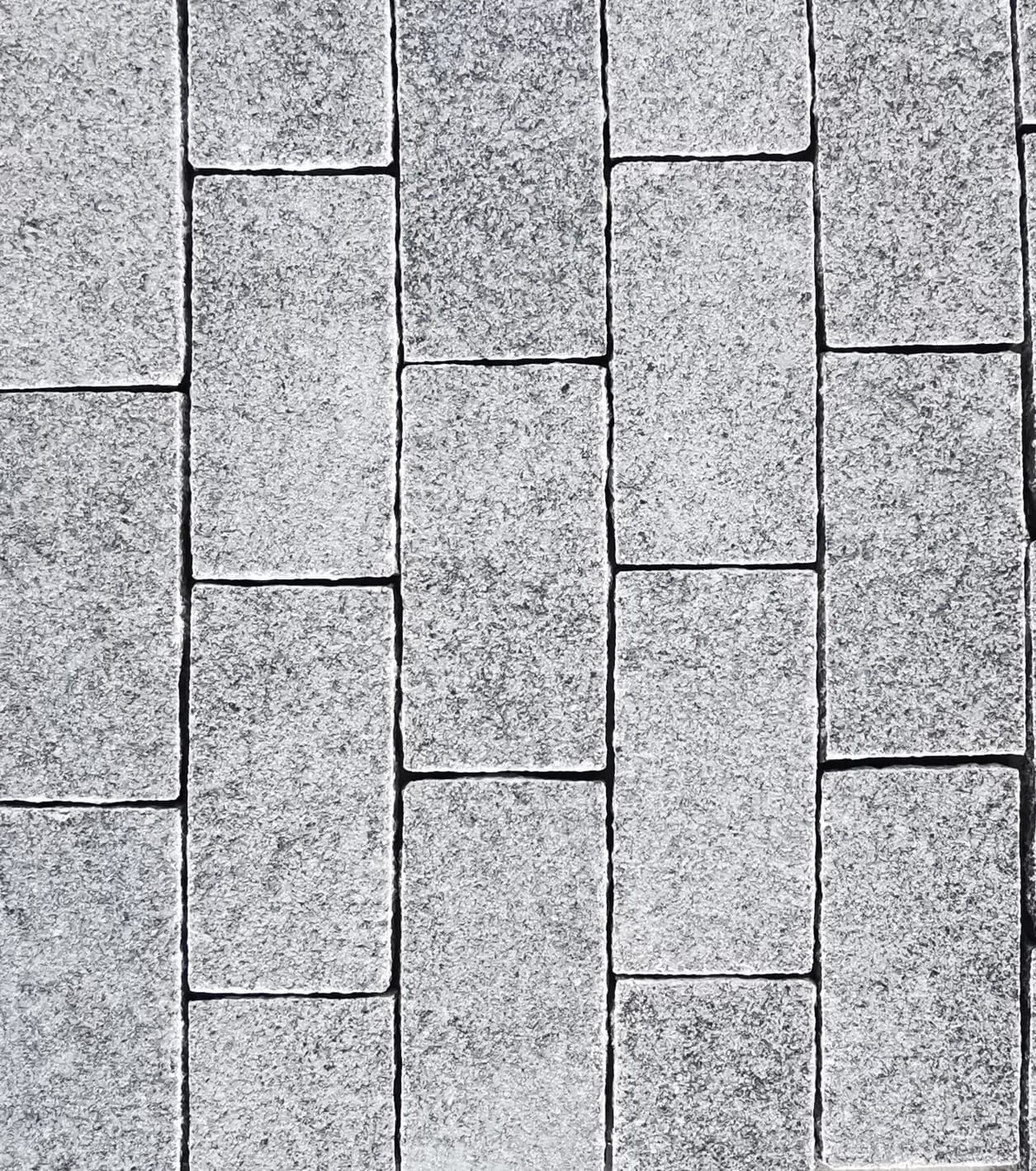 Granite Paver Rectangular