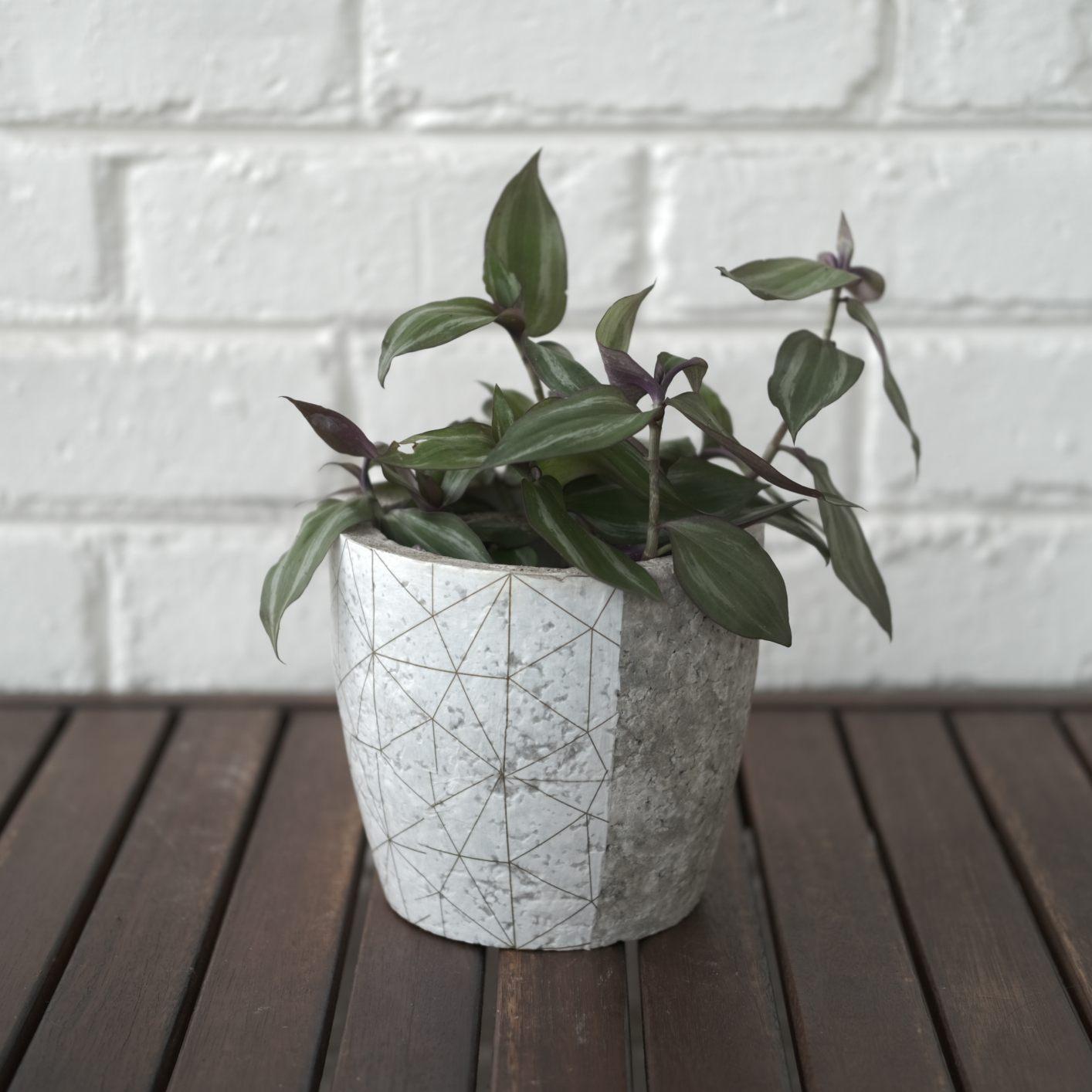 White and gold geometric plant pot