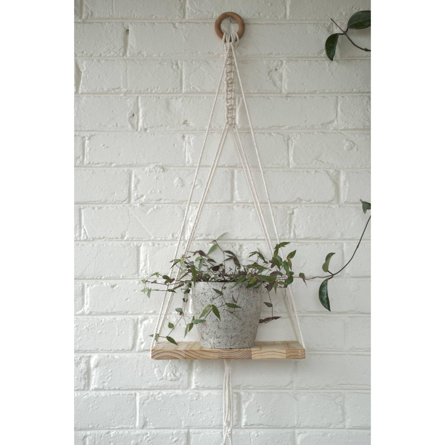 Modern macramé shelf with plain plant pot