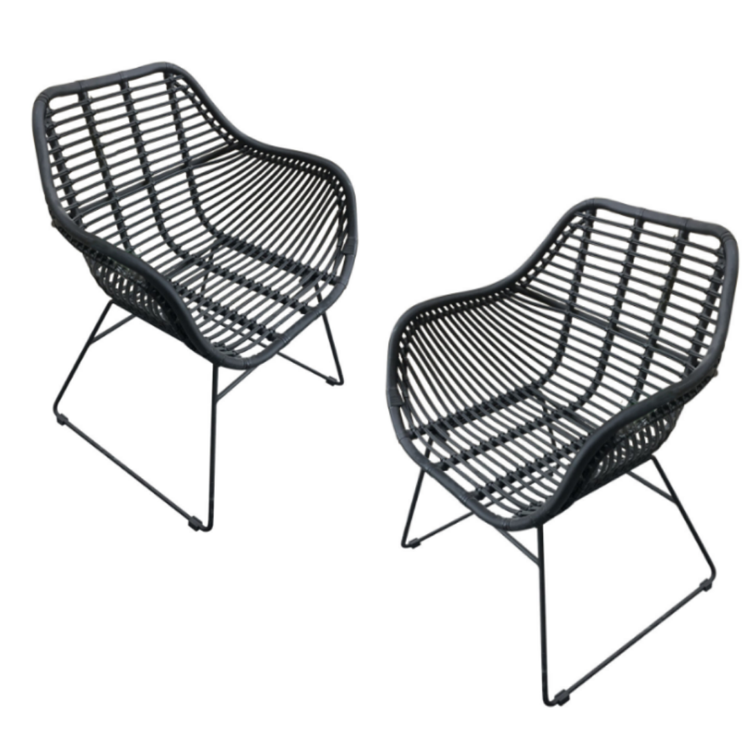 MON exteriors Wates Dining Chair-Set of 2